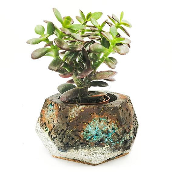 Patina Betonpflanzgefäße